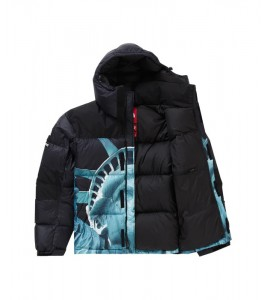 Куртка Supreme х The North Face Statue of Liberty Baltoro Jacket Black - Фото №2