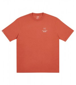 Футболка Palace Arc'Teryx T-Shirt Ochre - Фото №2