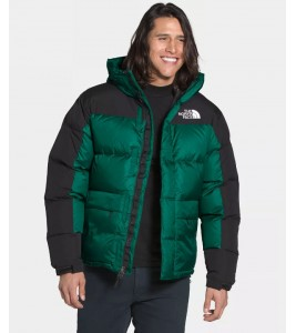 Куртка The North Face HMLYN Down Parka Evergreen